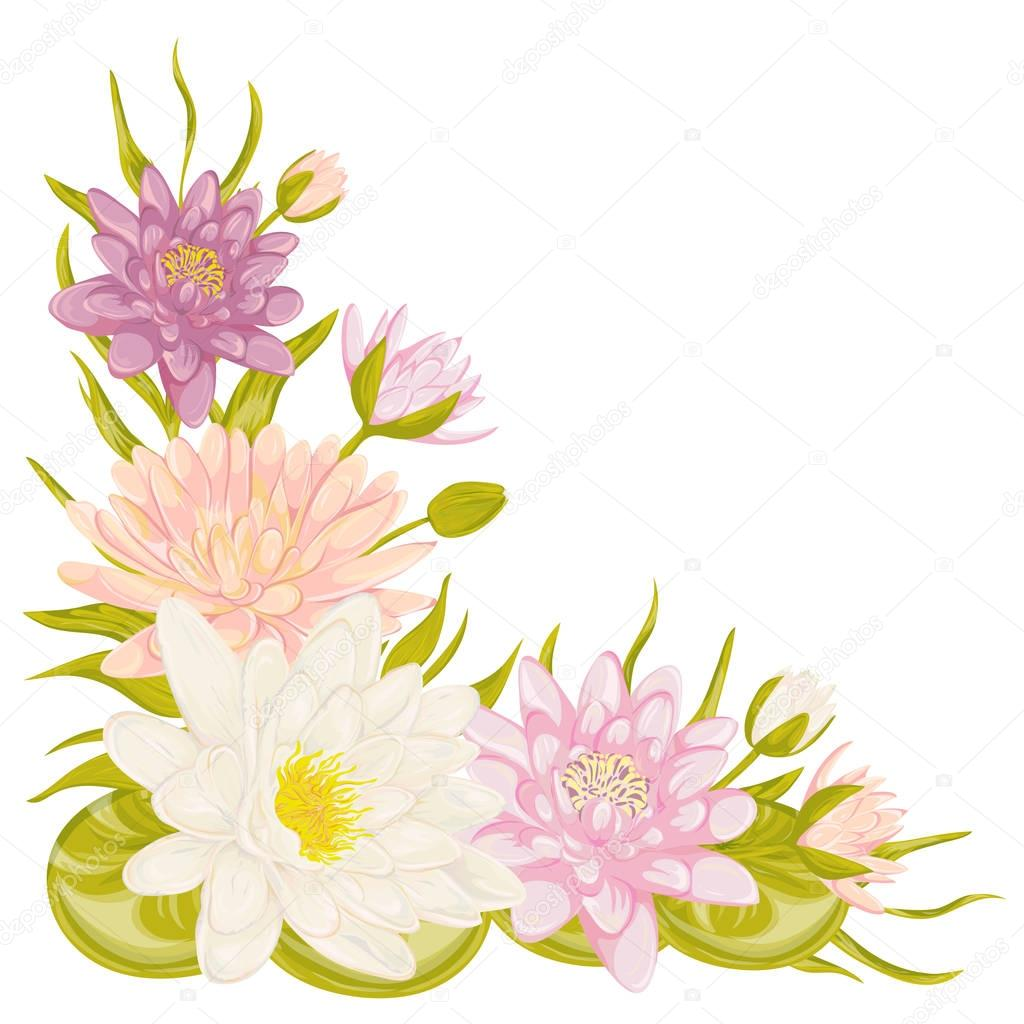 Water lily set collection decorative floral design elements for water lily set collection decorative floral design elements for wedding invitations and birthday cards dhlflorist Images