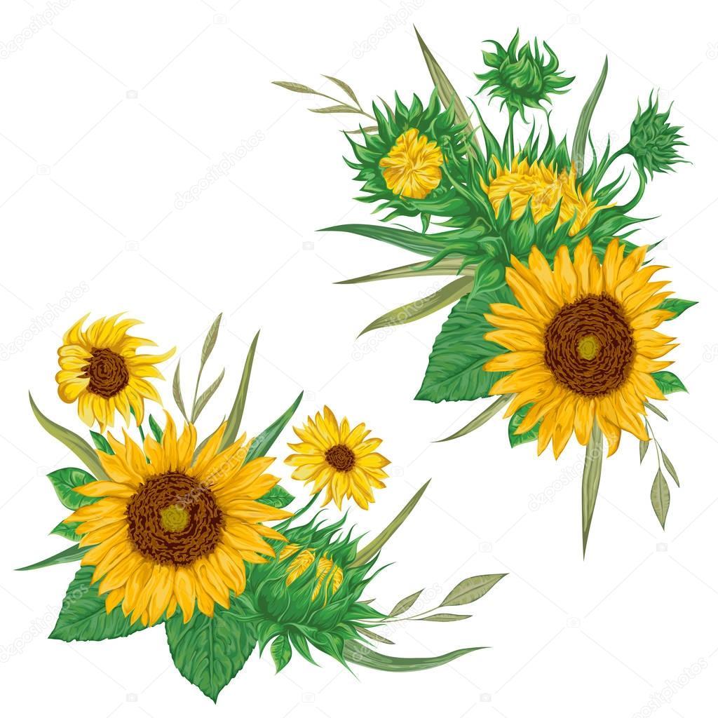 Sunflowers set. Collection decorative floral design elements for ...