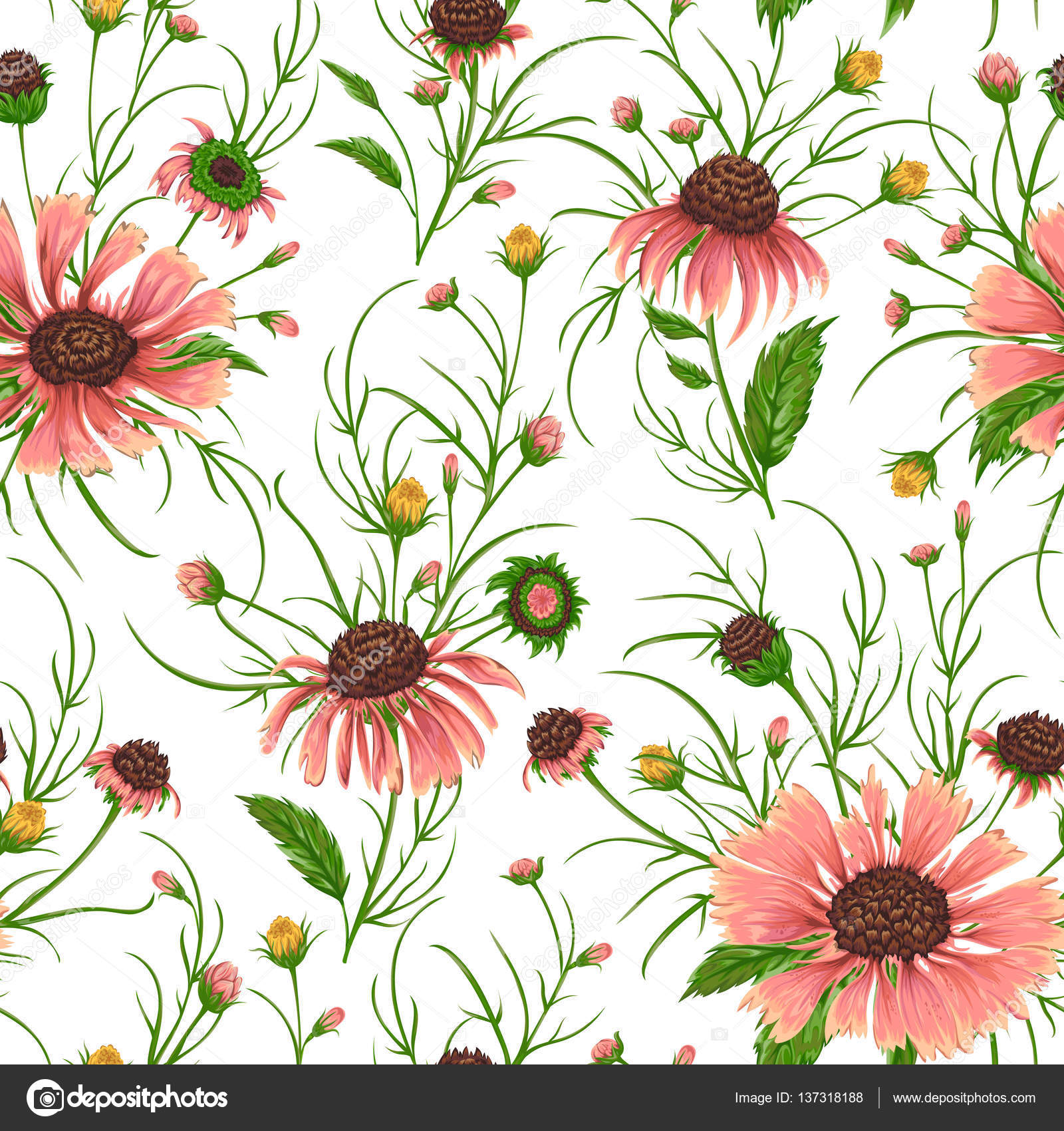 Rustic Floral Backgrounds Seamless Pattern With Chamomile