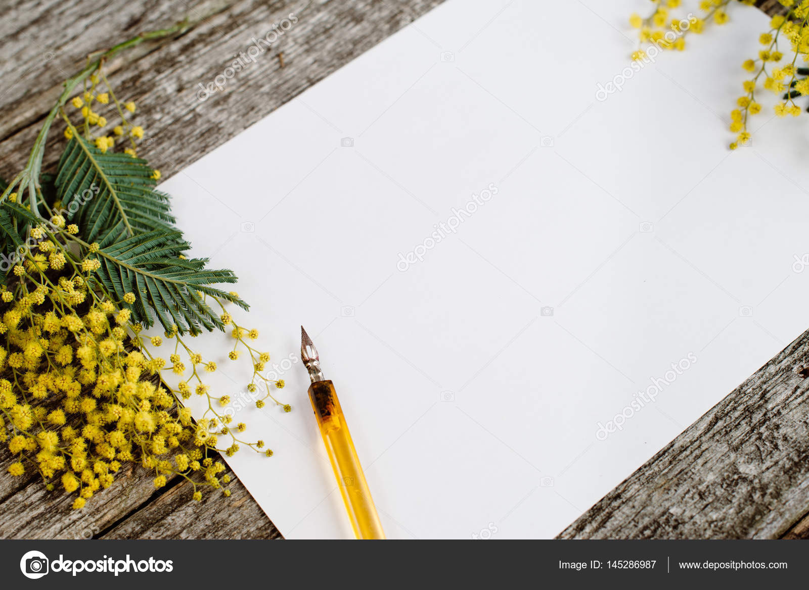 White Paper Mock Up With Yellow Flowers Mimosas And Vintage Pen Ink