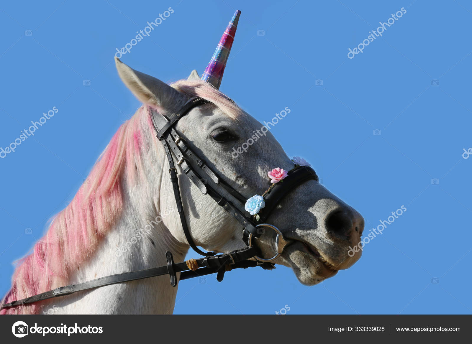 Beautiful Magical Unicorn Horse Realistic Photography Stock Photo C Accept001 333339028
