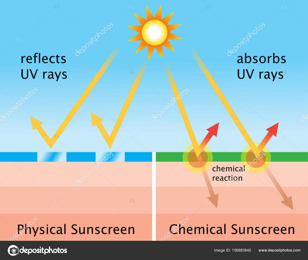 Diagrama de qumica protetor solar e protetor solar fsico vetores diagrama de qumica protetor solar e protetor solar fsico vetores de stock ccuart Gallery