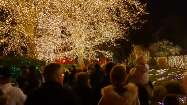 Temple Square Salt Lake City Christmas Lights.A Family Looks At The Christmas Lights On Temple Square In Salt Lake City
