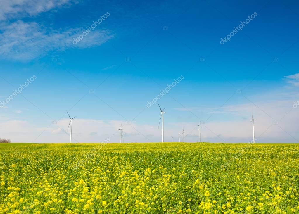 Windmills on green field under blue sky.
