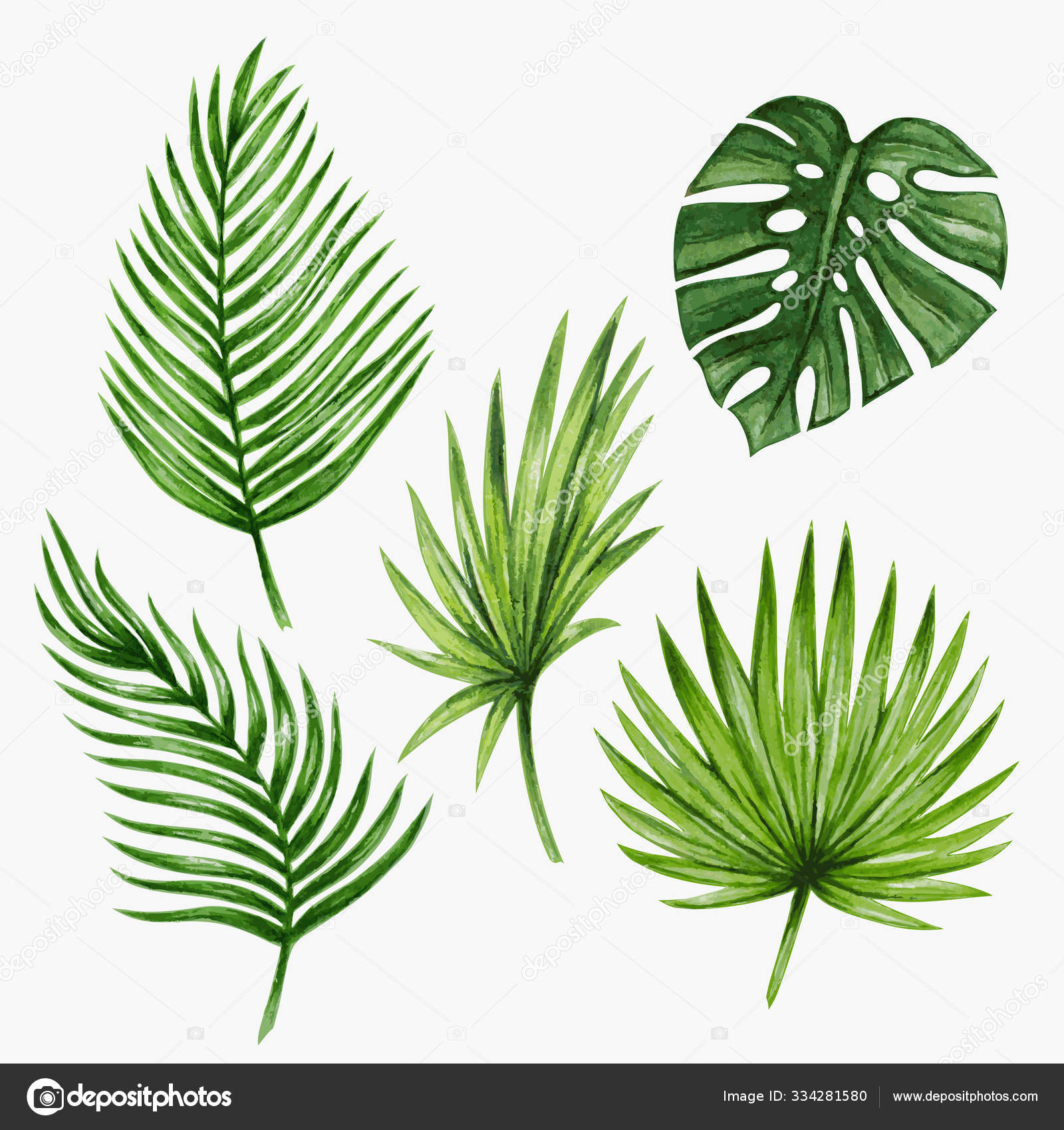 Watercolor Tropical Palm Leaves Stock Photo C Karinacornelius 334281580 Check out our tropical jpg selection for the very best in unique or custom, handmade pieces from our shops. https depositphotos com 334281580 stock photo watercolor tropical palm leaves html