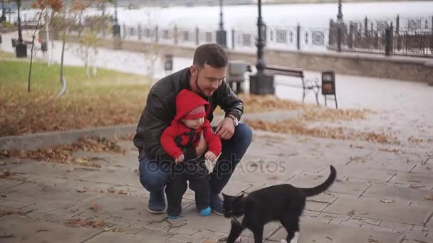 the baby first saw a black cat. Dad and son in the park park