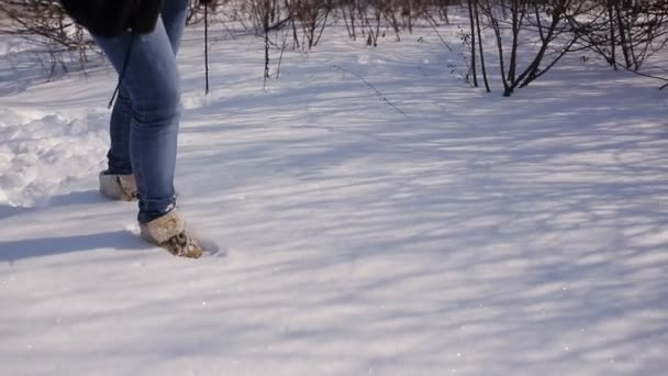 Nohy žena chůze na sněhu stopy na zasněžený den