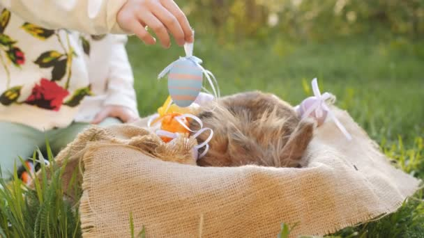 The girl puts the colored eggs in the basket with the Easter Bunny