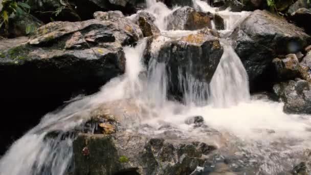 Horské řeky vodopád v lese. Krásné horské krajině lesů. Příroda a klid
