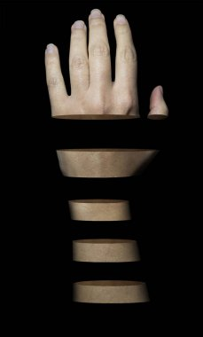 human arm sliced