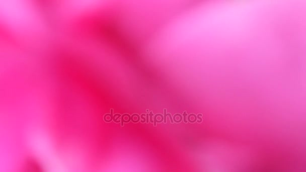 Pink blurred abstract background motion spots
