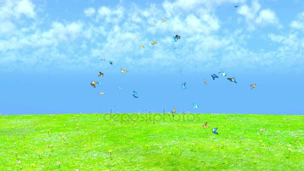 A swarm of butterflies