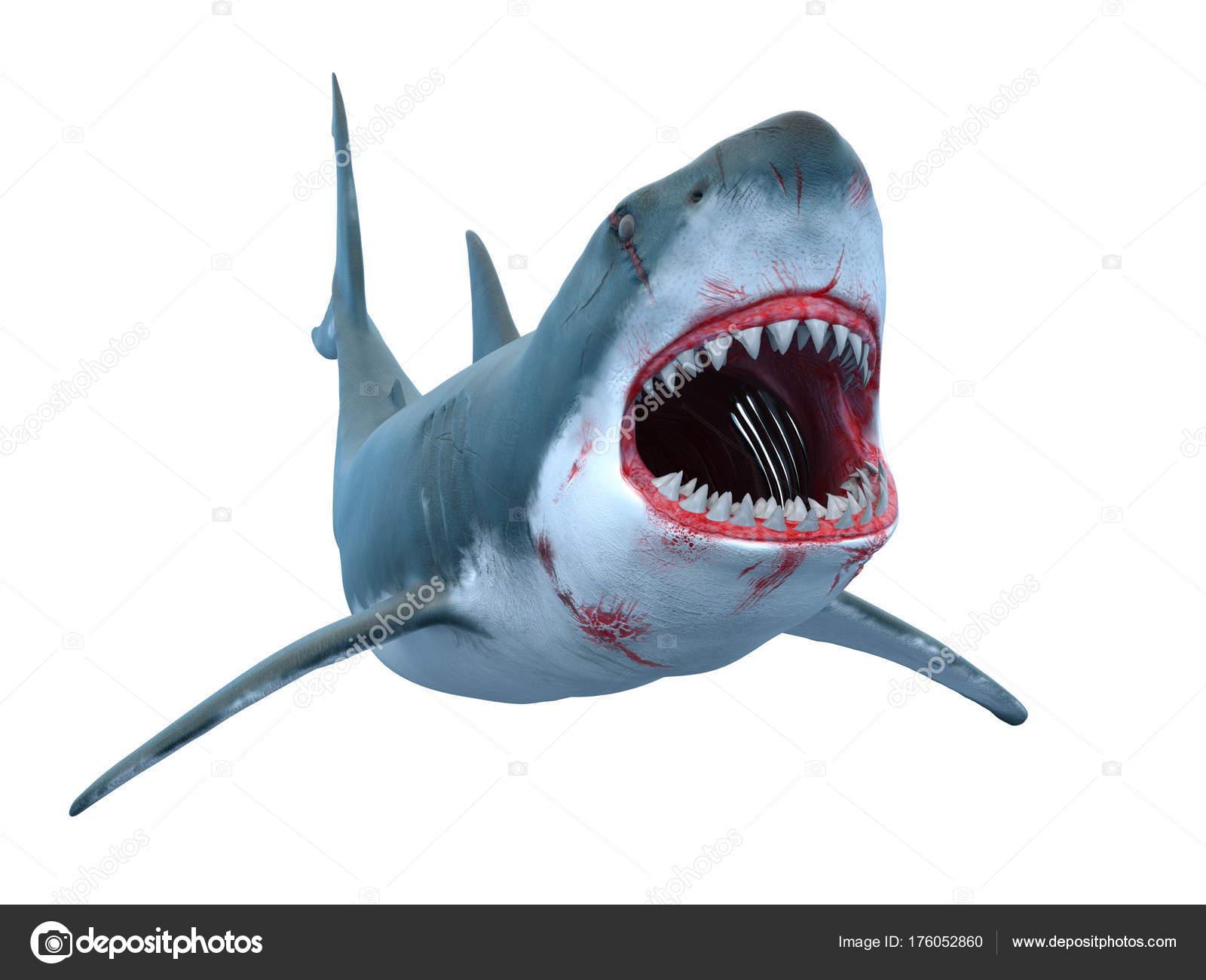 Render Tiburón — Fotos de Stock © TsuneoMP #176052860