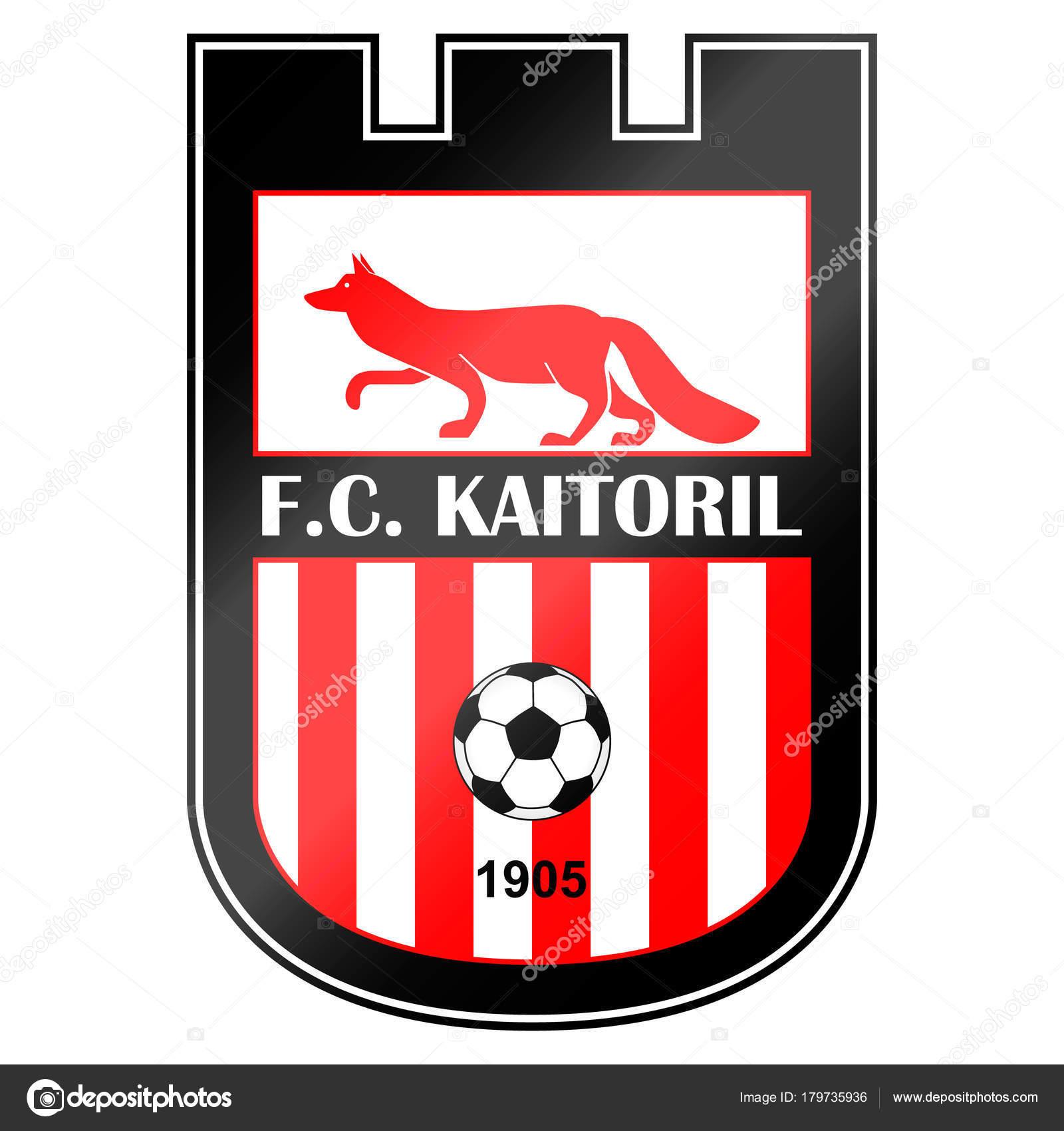 Fussball Team Logo Handelt Sich Fiktive Namen Hier Kann Ein