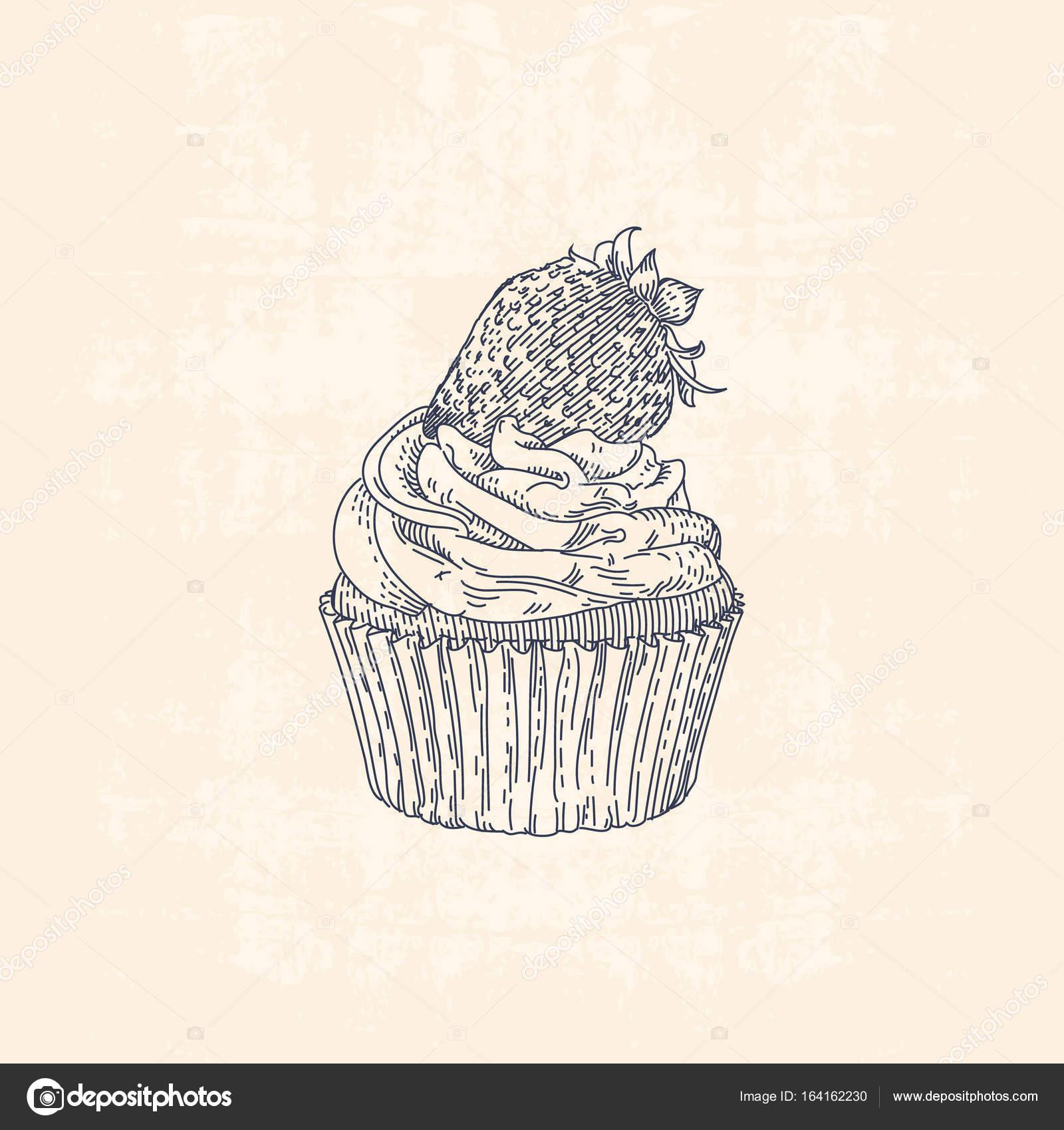 Illustrazione Disegno Cupcake Illustrazione Di Disegno A