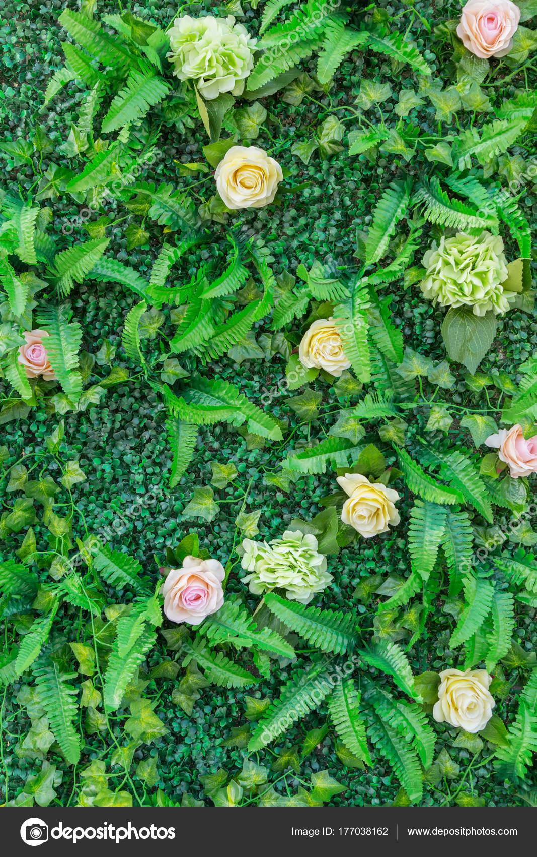 Blumen Pflanzen Wand — Stockfoto © 4045qd #177038162