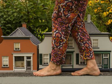 Big foots and small houses.Unusual view.Gulliver in town.