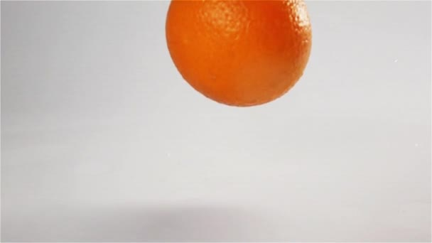 Oranges falling and bouncing at white wet surface