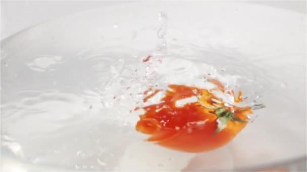 Málo červená rajčata, ovoce uvrhnout ve vodě se ztotožníte