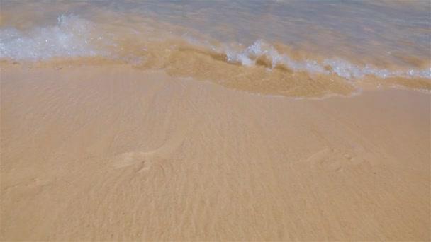 Wavy tropical beach in tropical island.