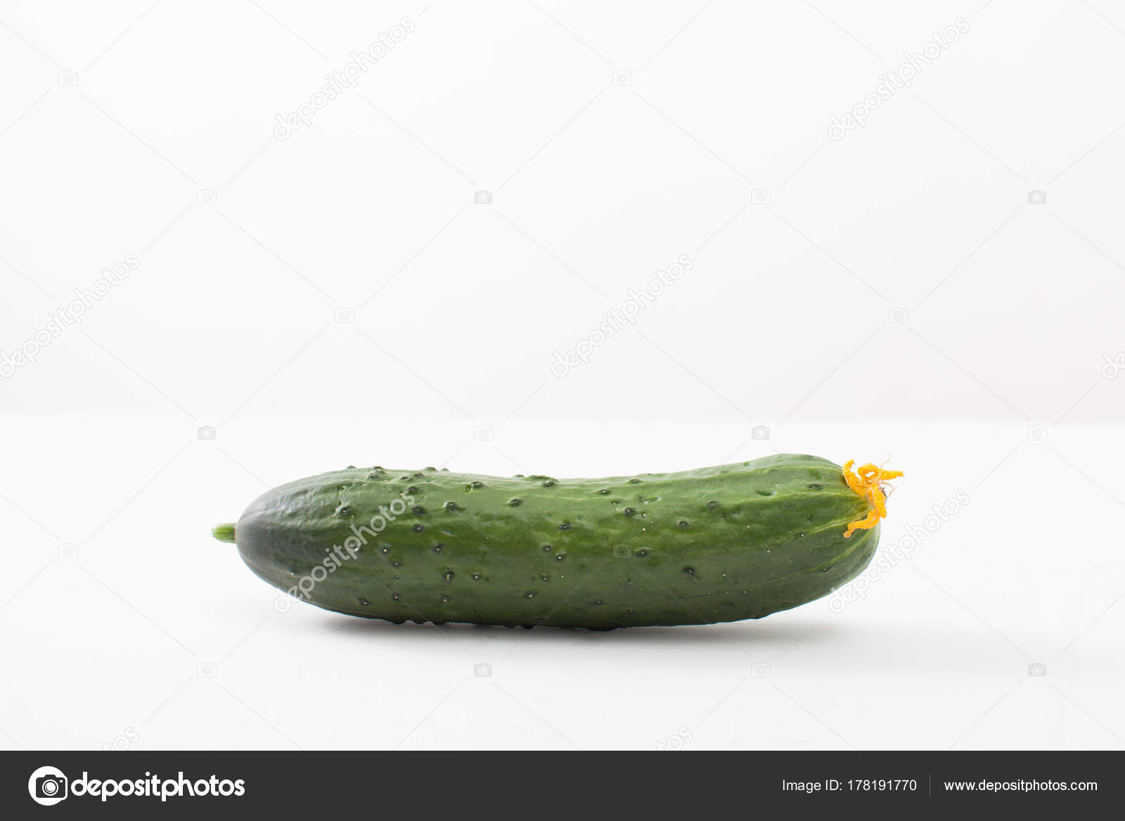 Cucumber With Yellow Flower On White Background Stock Photo