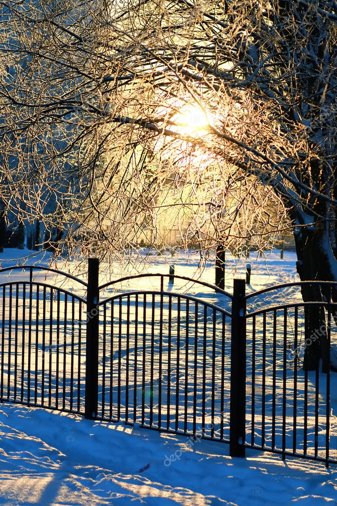 fence covered snow winter park