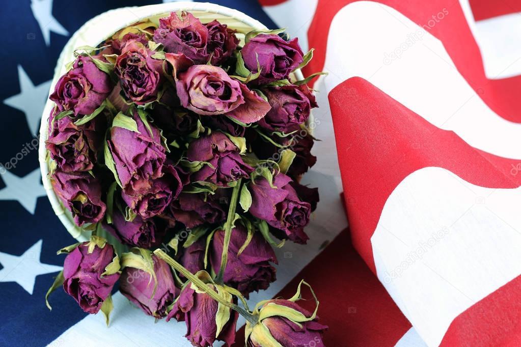 US flag rose flower