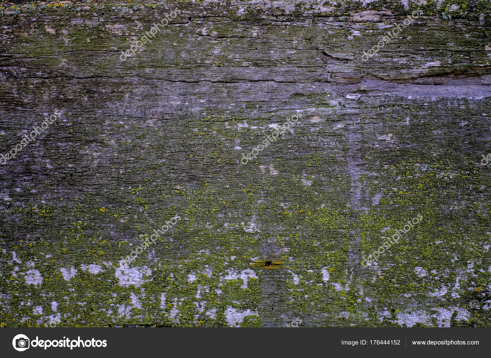 Braun Holz Textur. Abstrakt, leere Vorlage — Stockfoto © hayoshka ...