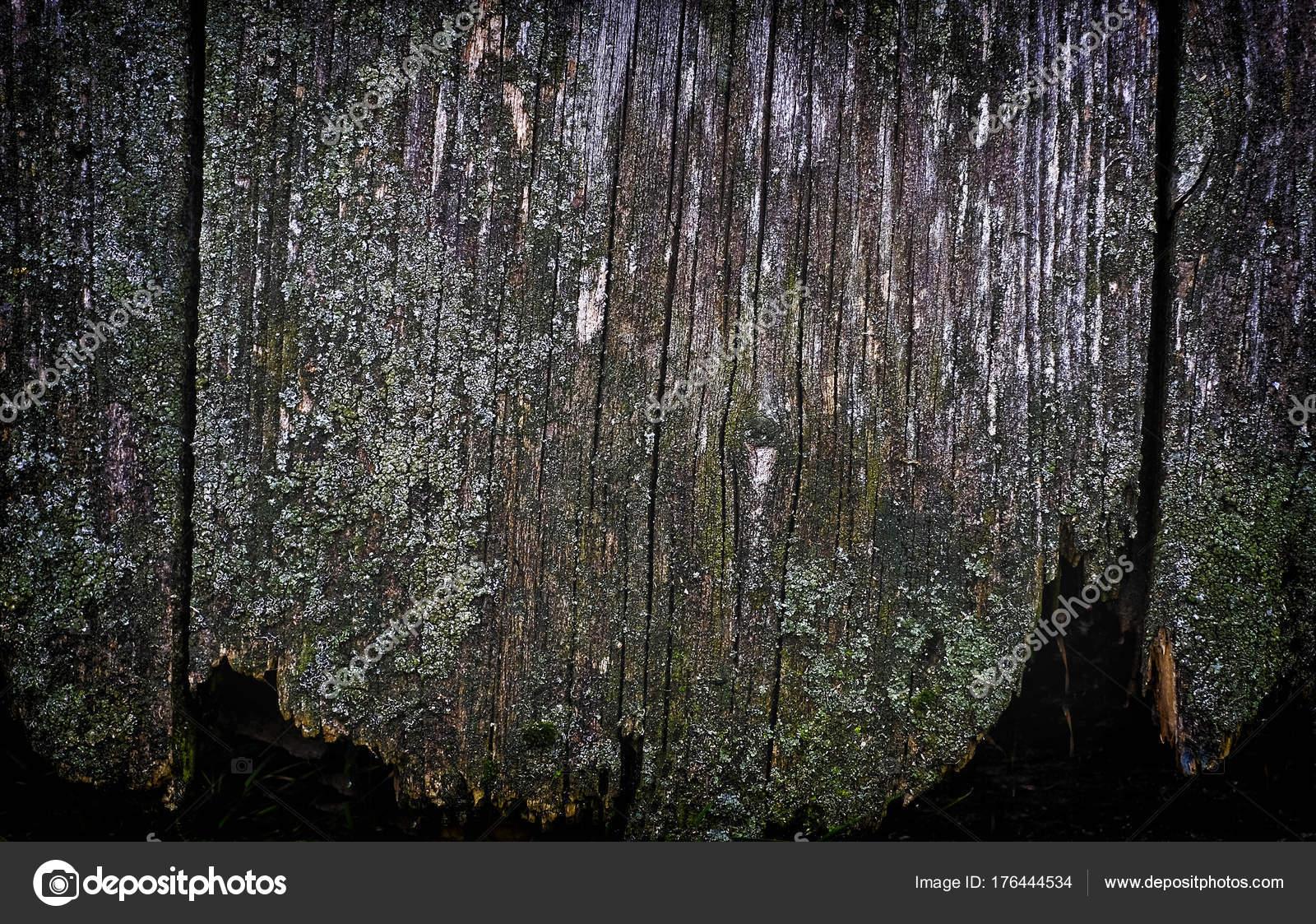 Alte Holz-Textur. Zusammenfassung Hintergrund, leere Vorlage ...