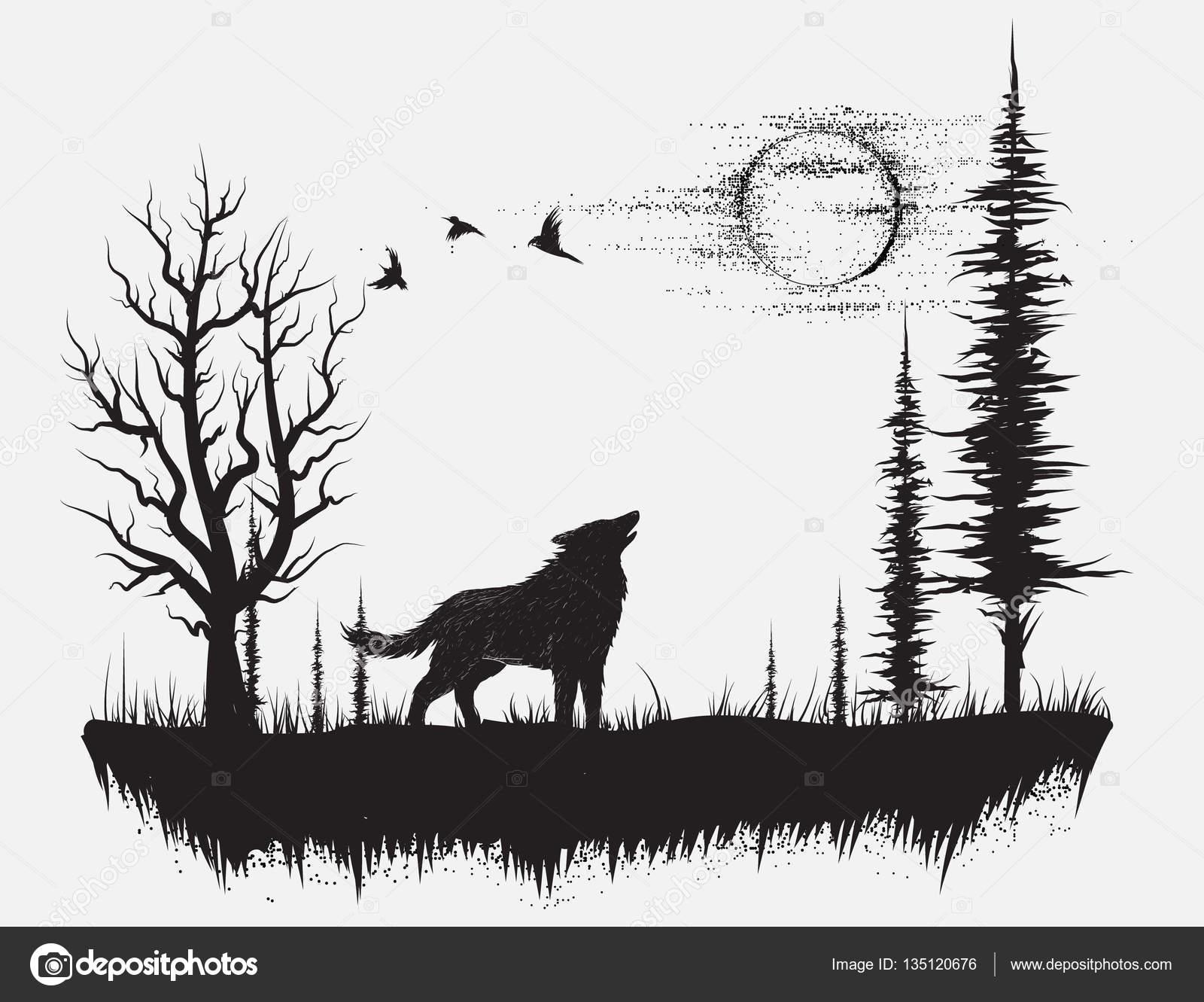 Dibujos Lobos Aullando Lobo Aullando A La Luna Vector De Stock