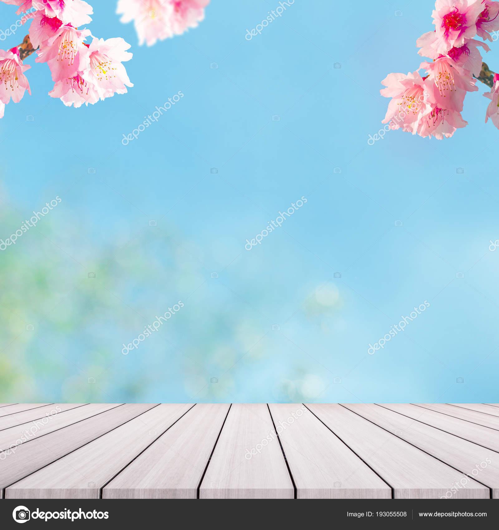 Cherry Blossom Trees On Backgorund Pink Sakura Flowers Stock