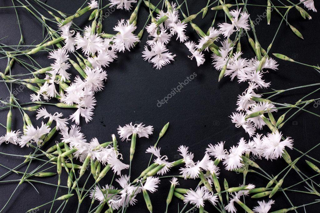 weiße Blumen auf hölzernen Hintergrund — Stockfoto © crisper85@yahoo ...