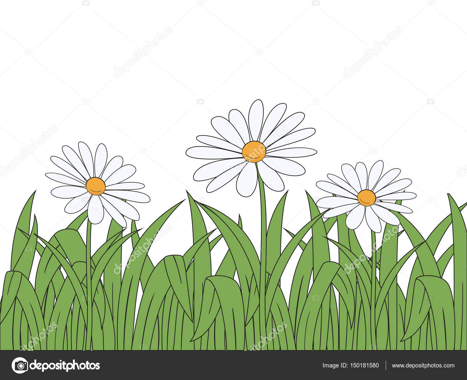 Cartoon Flowers And Grass On White Background Vector Illustration By Sanchesnet1gmail