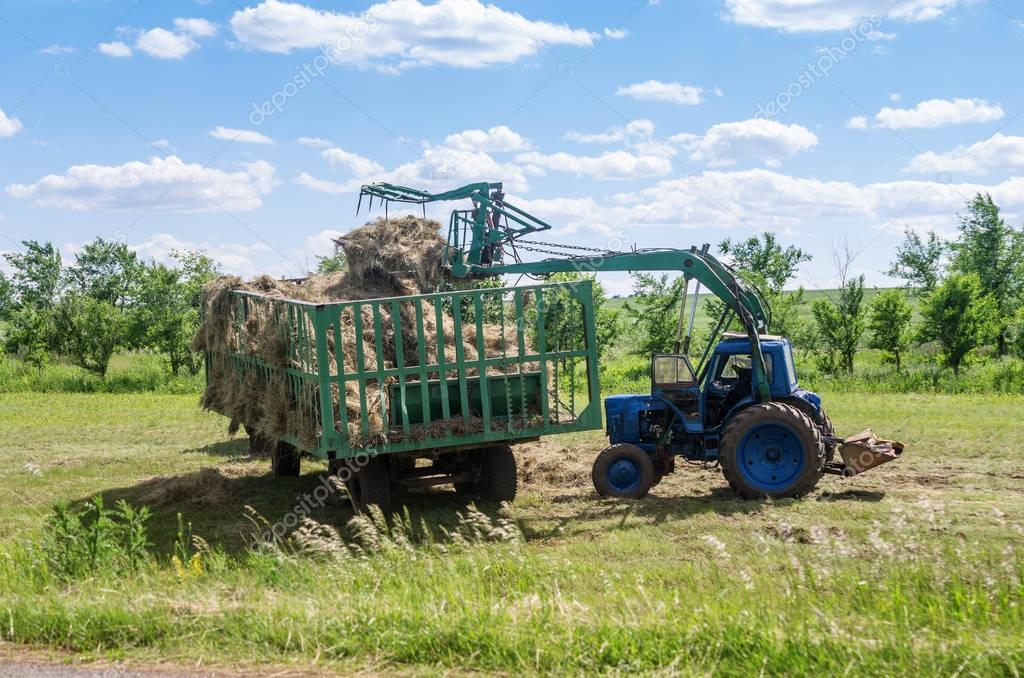 Front loader loads hay in the trailer
