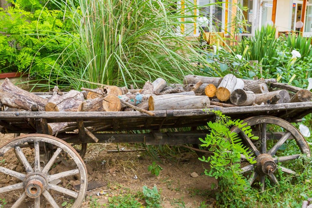 Old wooden cart on top of are logs