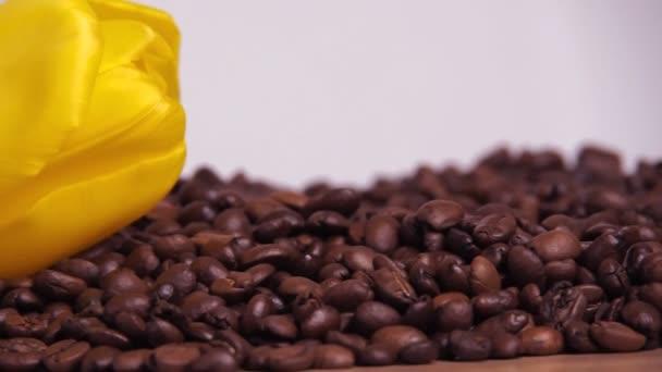 Cup-fehér és sárga virág a kávébab. Egy kis fehér bögre kávé bab. A kávé bab sárga tulipán
