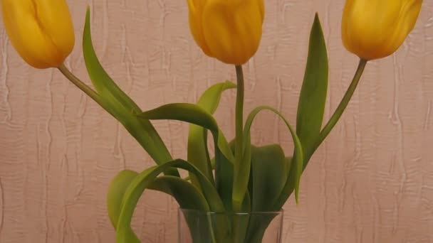 Cup of coffee with croissants. Freshly brewed coffee with buns in the kitchen. Yellow tulips.