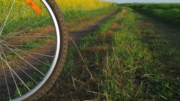 Kolo kolo na přírodu. Horská kola v přírodě. Na kole na venkovské silnici