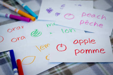 French; Learning New Language with Fruits Name Flash Cards