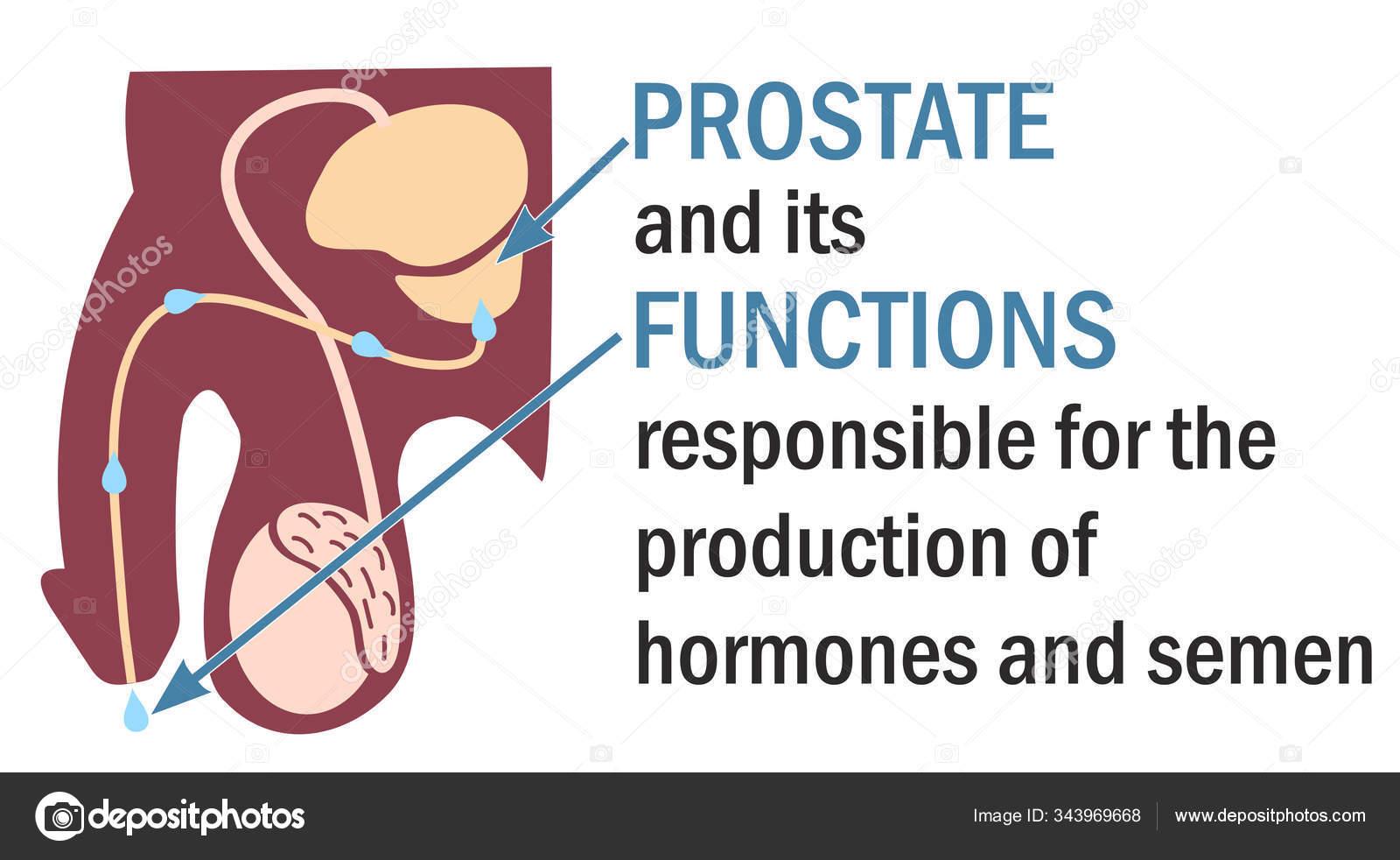 Prostatitis fun vizelési inger szúró fájdalom