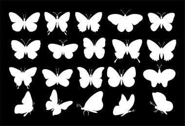Butterflies silhouettes. spring butterfly silhouette collection white on a black background. Vector butterfly set. Different types of butterflies icons icon