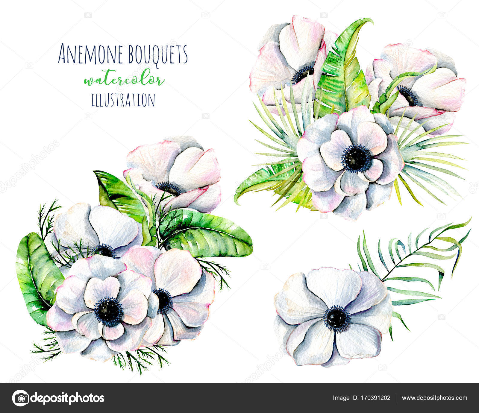 Watercolor white anemone flowers bouquets — Stock Photo ...