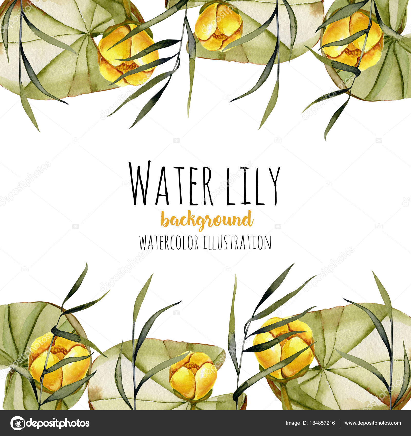 Watercolor Reeds Yellow Water Lily Background Greeting Card Template ...