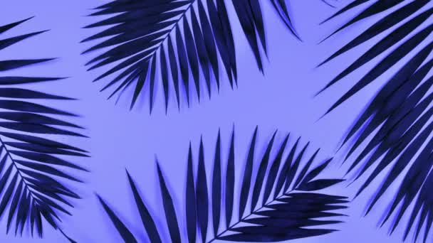 Tropical palm leaves in bold gradient holographic colors