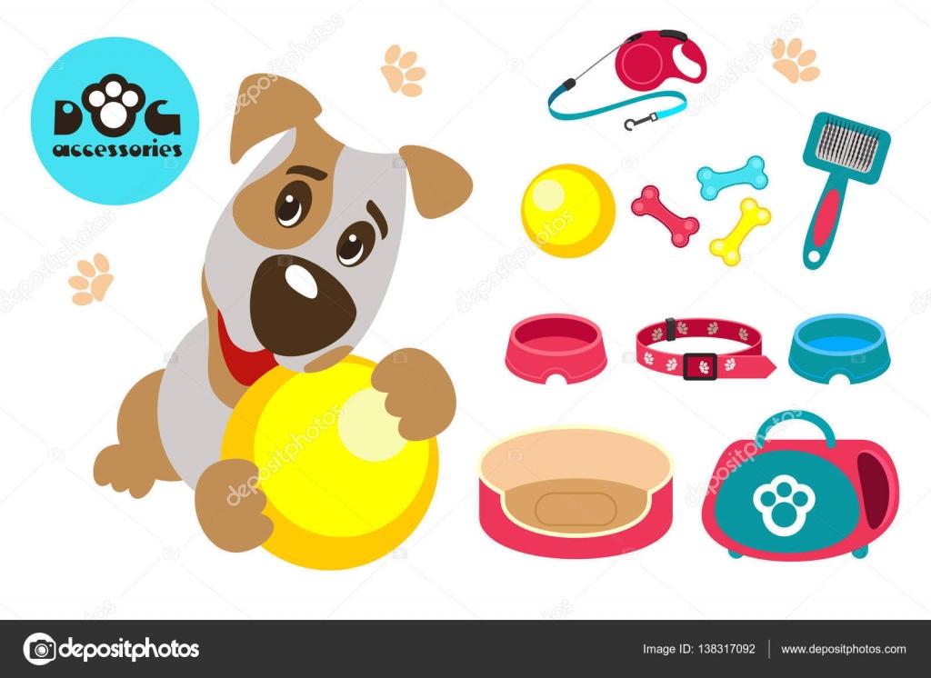 Colecci n de accesorios para perros divertido perro jack for Accesorios para mascotas