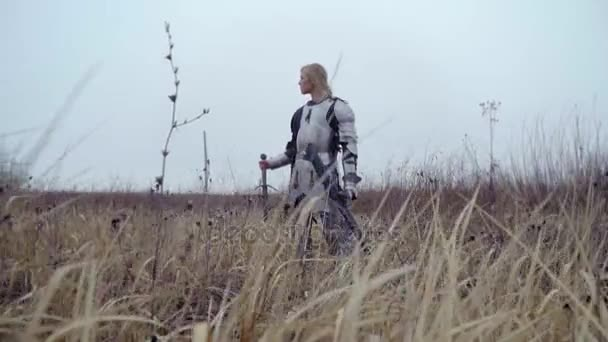 Jeanne Dark in armor and with a sword stands in the field and looks into the distance