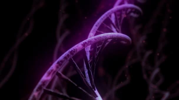 DNA spinning Rna dvojšroubovice pomalé věda elektronový mikroskop closeup dof 4k