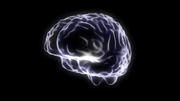 Brain hologram rotating loop 4k