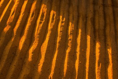 The texture of the sand at dawn.