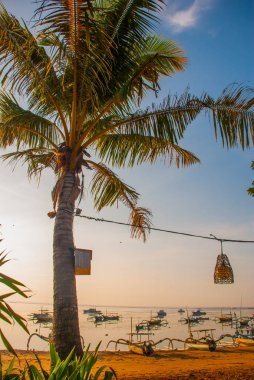 Beautiful beach with a cafe in Sanur with local traditional boats Palm trees on the island of Bali at dawn. Indonesia